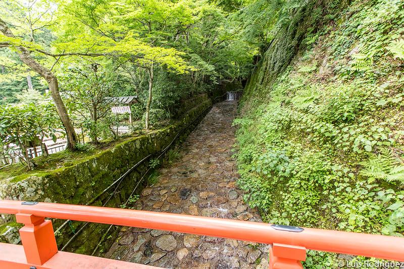 Naturaleza de Ohara