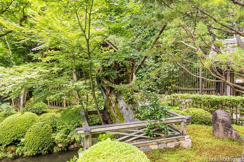 Jardines del templo Jakko-in