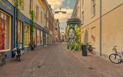 Arnhem Varkensstraat street art.