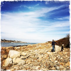 Loblolly Cove. Cape Ann. Mass.