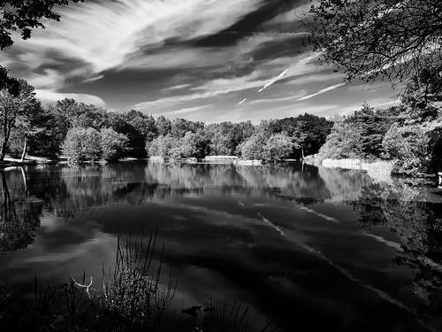 landscape blackandwhite mono bw pond water reflection clouds