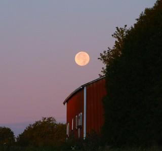 Full Moon setting in Wisconsin behind a Farm Landscape
