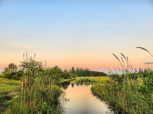 Hunter's Moon over wet prairie 20191014
