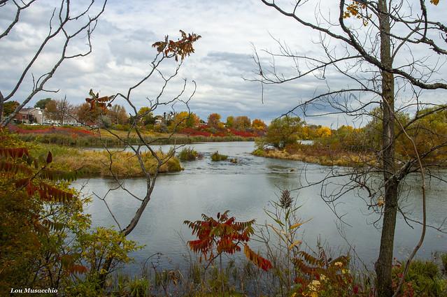 fall at the park1