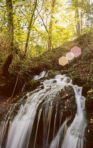 Analog Falls Nikon FA (Film: Kodak Ektar 100)