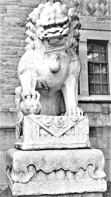 Chinese male lion guardian figure