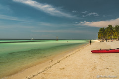 Moalboal-Philippines-751