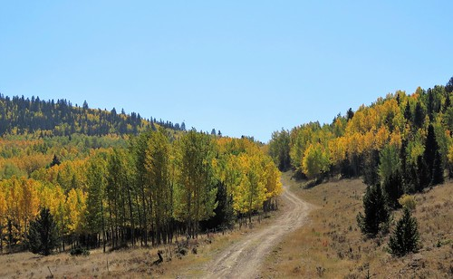 High Country Road