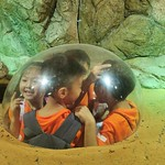 30 September - P1 Learning Journey to Singapore Zoo