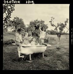 Propozycja absurdalnego zdjęcia, to dzieciaki lubią najbardziej :-)