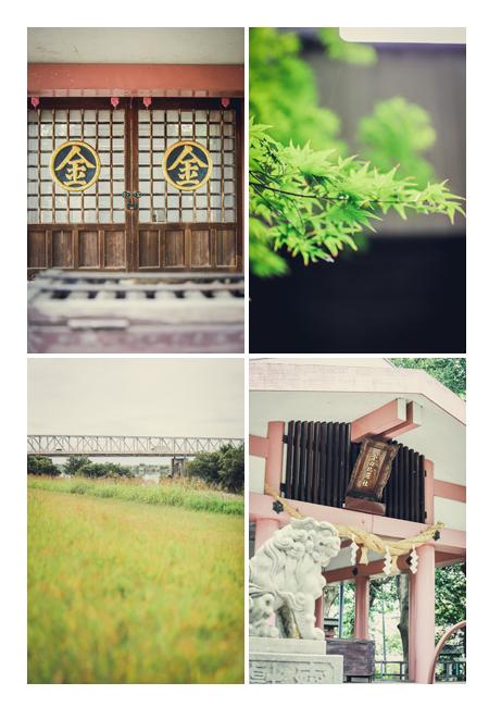 愛知県一宮市にある金毘羅神社 木曽川沿いの土手
