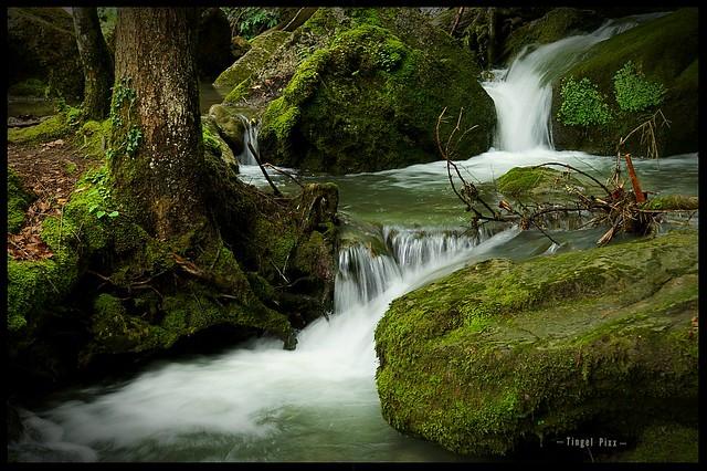 Bachlauf am Fuße der Gießbachfälle in der Schweiz
