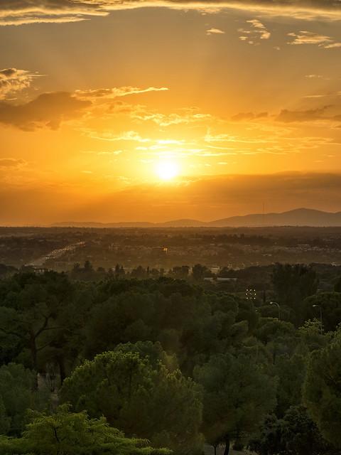 El sol en caída libre (1)