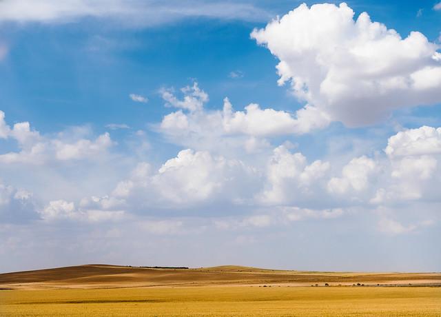 CloudFlock.jpg