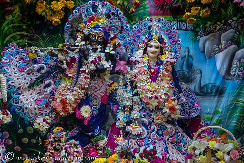 ISKCON Vrindavan Deity Darshan 15 Oct 2019