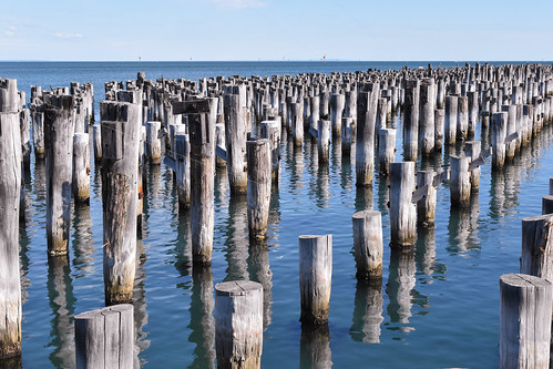melbourne portmelbourne portphilipbay australia bay water sea relics shadows stumps pilons port old victoria waterscape sunny outdoor seascape reflections bluesea horizon