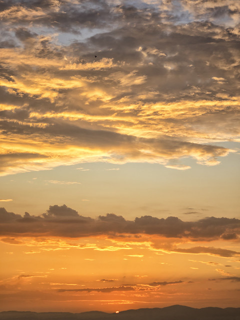 El sol en caída libre (6)