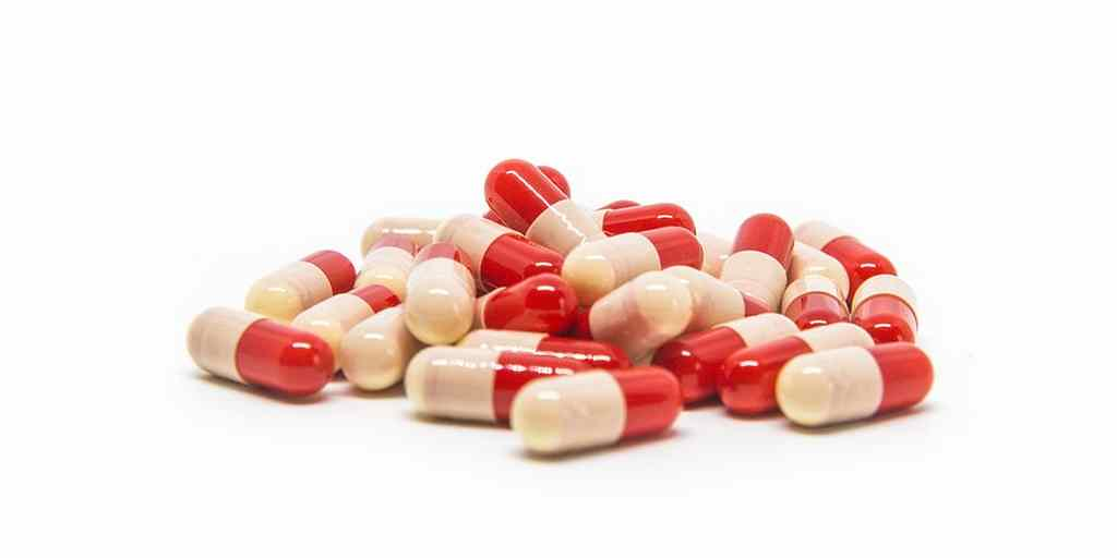 analgésique-soulager-la-douleur-champignon-tasmanie