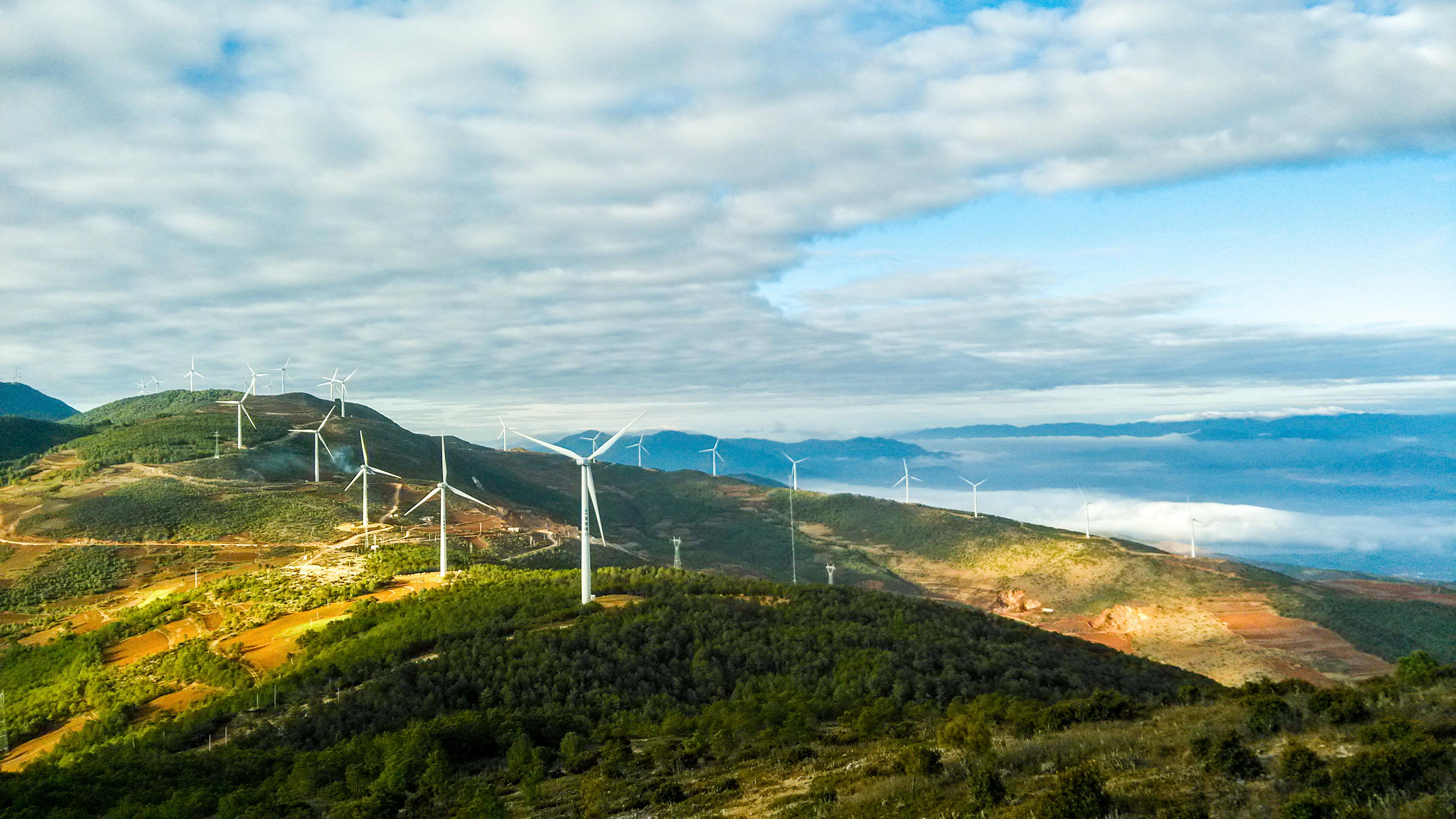Global Wind Day 2019: Beautiful Wind