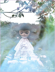Take a Walk on a Foggy Morning (for Blythe a Day Oct-15-2019 )