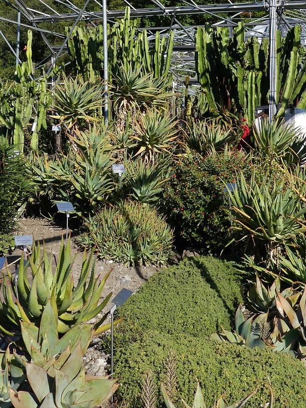 Gärten von Trauttmansdorff