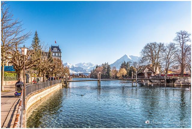 Lake Thun and the Swiss Alps - Winter panorama - D81_8316