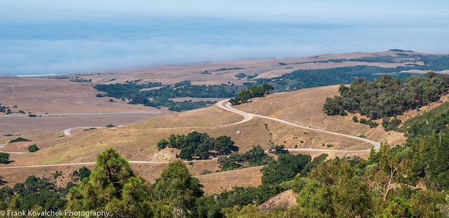 View of the approach road to Hearst Castle