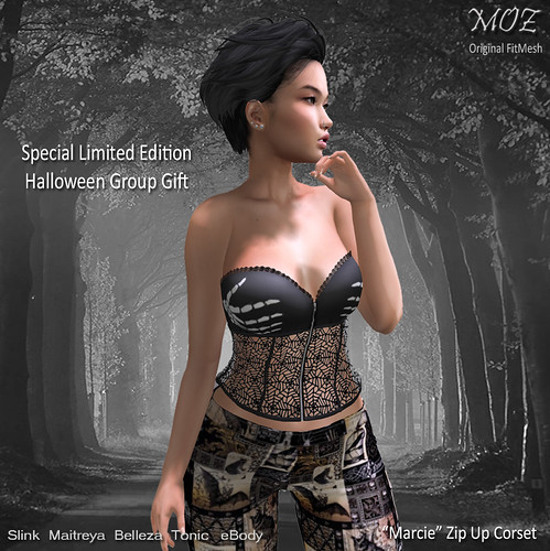 "MOZ ""Marcie"" Zip Up Corset - Special Group Gift"