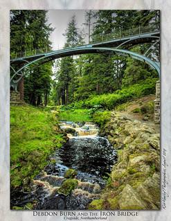 The Iron Bridge : Cragside, Northumberland