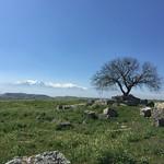 Laodikya