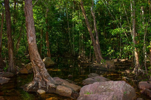 Florence Creek