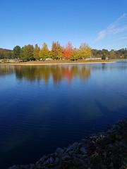 Fall Foliage   Point Pleasant, WV