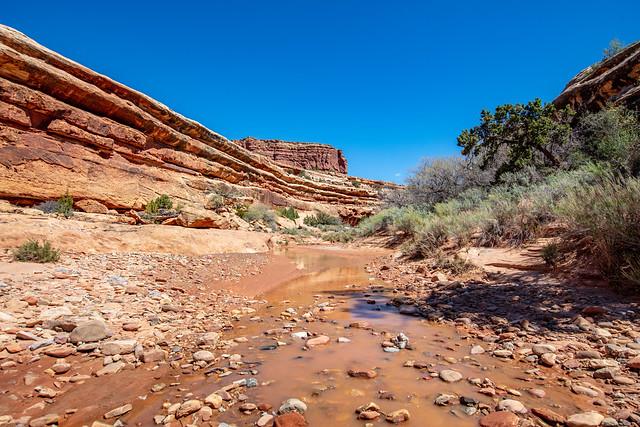 White Canyon water, Utah