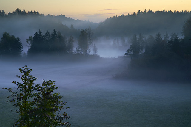 Daybreak with fog over the Brunnensee near Seeon