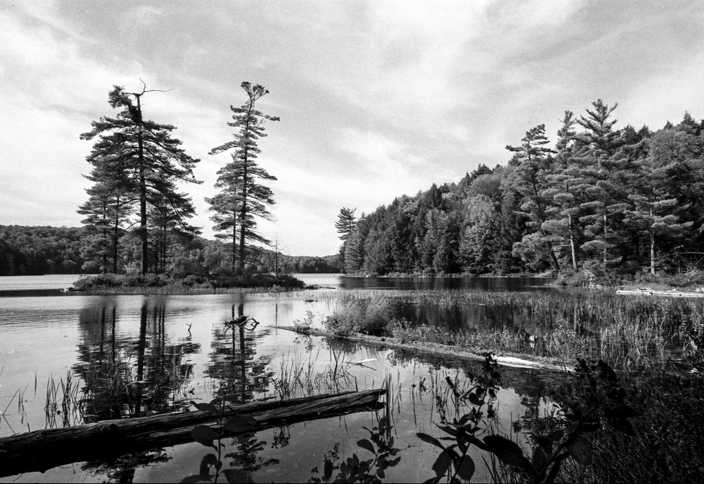 Buck Lake at it's Finest