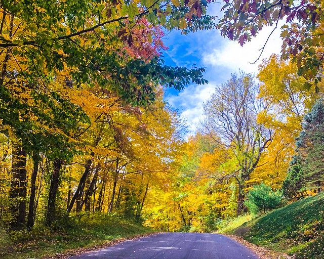 Fall Foliage-Litchfield County, Ct., 10/19