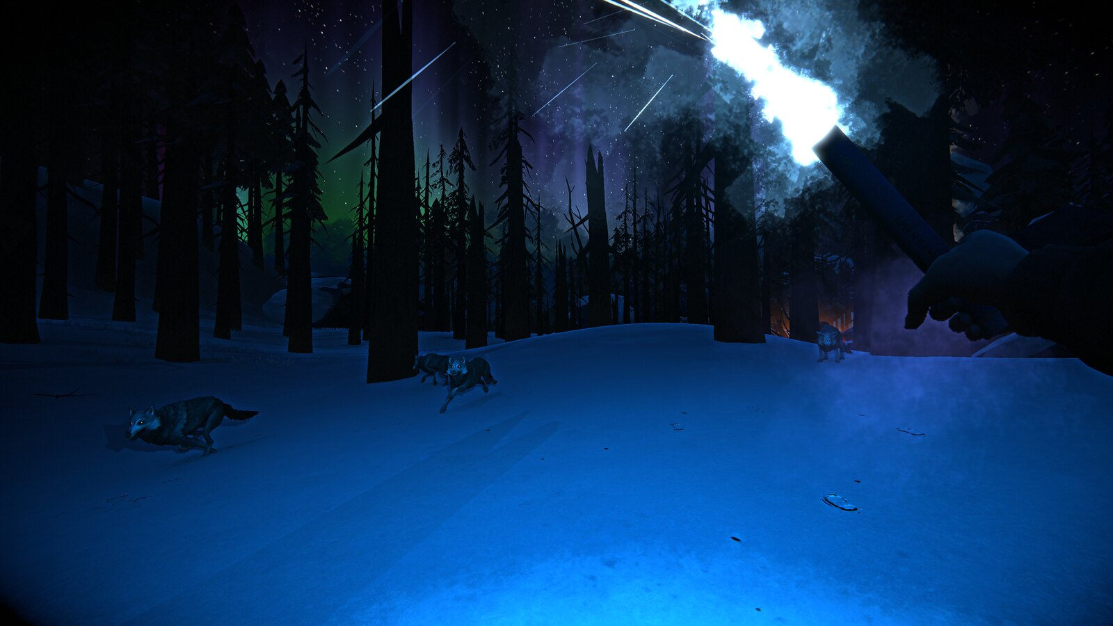 The Long Dark: Crossroads Elegy on PS4