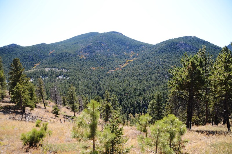 Mountain Lion Trail, Colorado (103)