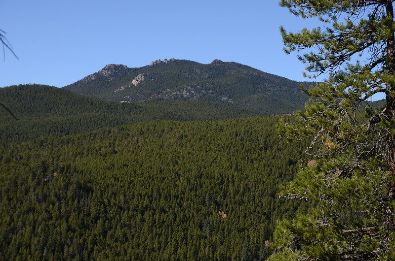 Mountain Lion Trail, Colorado (85)