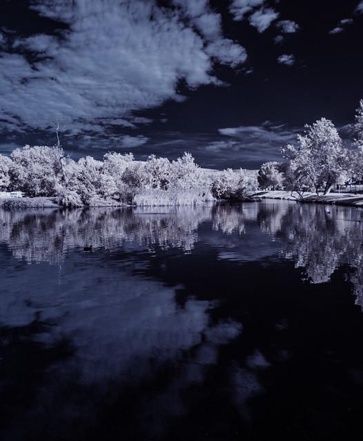 Tree And Cloud Reflections At Santee Lakes