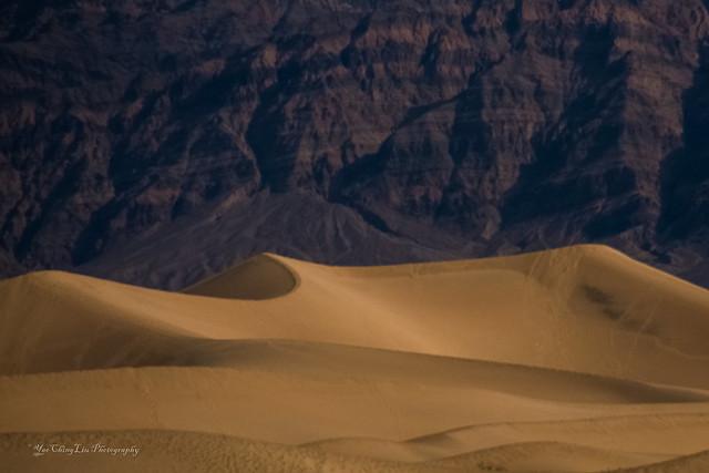 Sand Dune under full moon lights