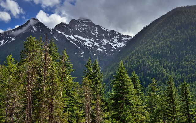 Pyramid Peak and Other Peaks of the Eldorado Massif (North Cascades National Park Service Complex)