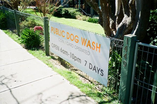 Sign - Public Dog Wash
