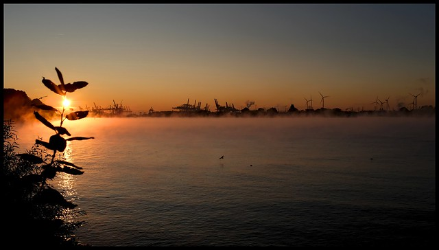 elbe morning setting