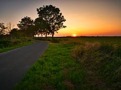 Sonnenuntergang bei Wiefels-Landkreis Wangerland