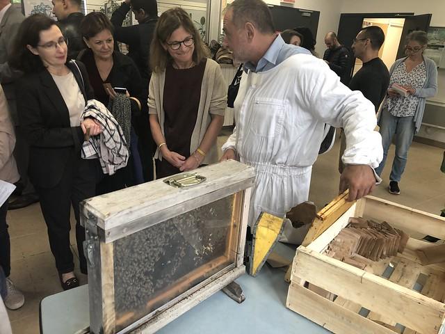 Mobilisation de l'académie de Bordeaux pour la transition écologique et l'Education au Développement Durable