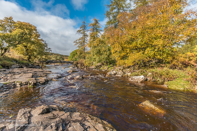 Autumn on the River Tees at Forest in Teesdale Oct 2019