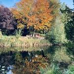 Lehne Park