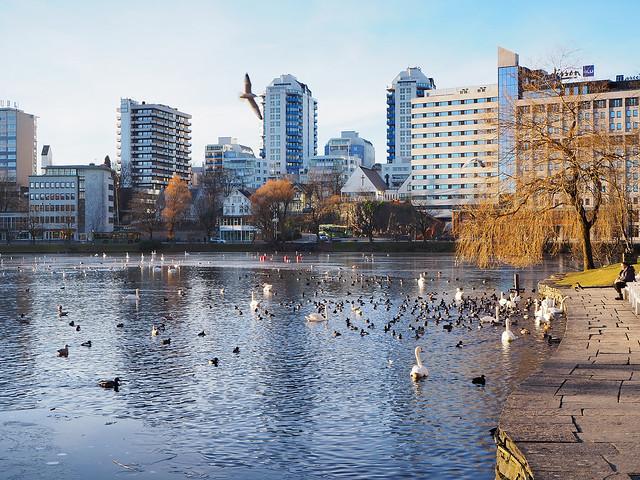 Stavanger forsidebilde