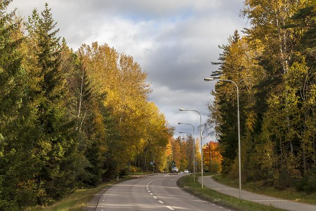 Road & Bike Path
